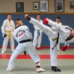 tae kwon do contact